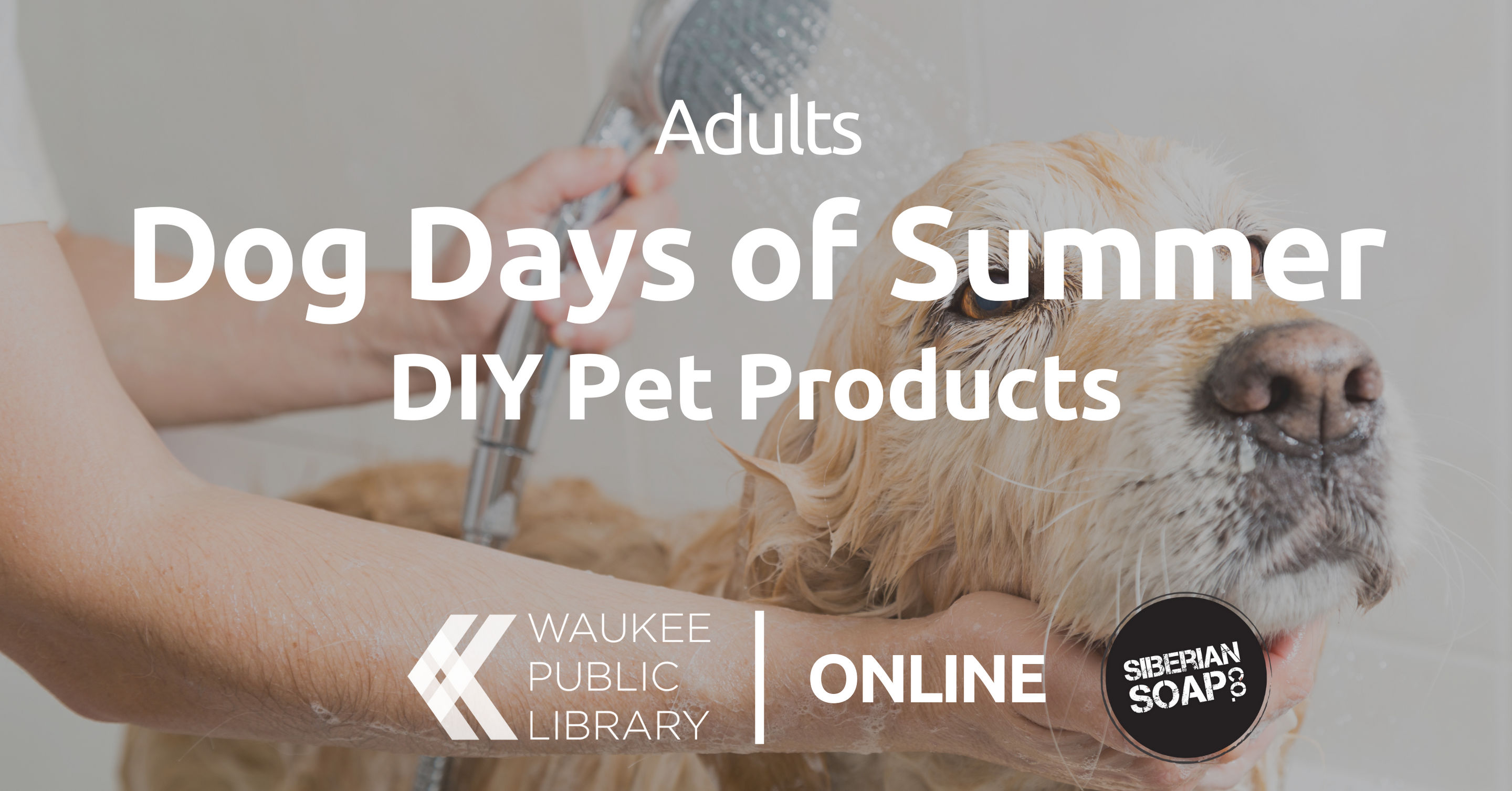 Dog Days of Summer: DIY Pet Products