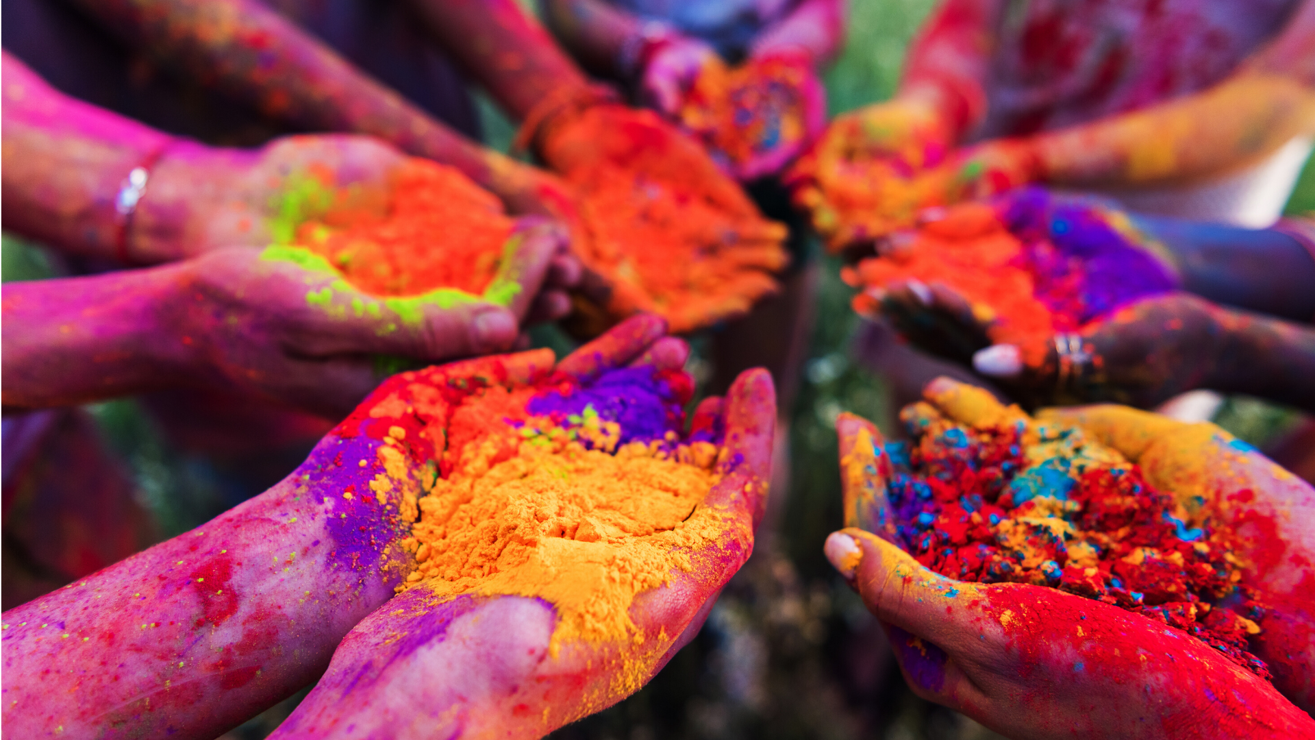 Learn About Holi